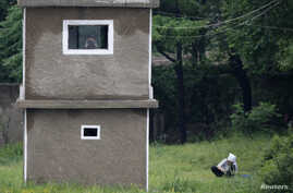 A North Korean soldier uses binoculars inside a guard tower as a woman works on a grassland on the banks of Yalu River, near the North Korean town of Sinuiju, opposite the Chinese border city of Dandong, June 12, 2013.