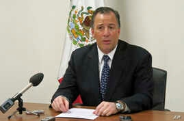 Mexico's Secretary of Foreign Affairs Jose Antonio Meade speaks to reporters during a news conference at the Mexican U.N. Mission in Geneva, Switzerland, Oct. 22, 2013.