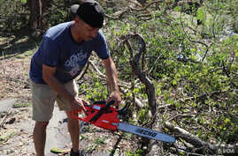 Johnny Gonzalez saws through a downed tree in Panama City, Fla., some of the destruction left by Hurricane Michael.