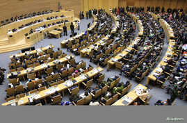 A general view shows the opening ceremony of the 22nd Ordinary Session of the African Union summit in Ethiopia's capital Addis Ababa, Jan. 30, 2014.