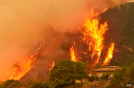 Flames from a back fire rise behind a home in Santa Barbara, Calif. A new red flag warning was scheduled to go into effect Saturday in the fire area because of the predicted return of winds. The Thomas Fire erupted Dec. 4 a few miles from Thomas Aqui...