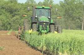 Study: Organic, Conventional Farmers Must Team Up to Feed World