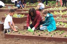 First Lady Michelle Obama is joined by school children as they plant items in the White House Kitchen Garden.