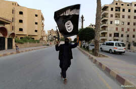 "A member loyal to the Islamic State in Iraq and the Levant (ISIL) waves an ISIL flag in Raqqa June 29, 2014. The offshoot of al Qaeda which has captured swathes of territory in Iraq and Syria has declared itself an Islamic ""Caliphate"" and called on f"