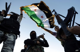 Free Syrian Army members raise their weapons and a revolutionary flag during a training session on the outskirts of Idlib, Syria, June 7, 2012.