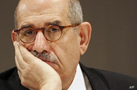 Egypt's ElBaradei Pulls Out of Presidential Race