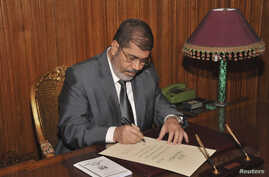 Egyptian President Mohamed Morsi signs a decree to put into effect the new constitution in Cairo December 25, 2012, in this handout photo released by Egyptian Presidency office.