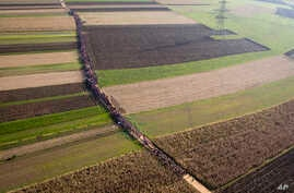 FILE - A column of migrants moves through fields after crossing from Croatia, in Rigonce, Slovenia, Oct. 25, 2015. Slovenia's parliament amended its laws on Thursday to enable police to seal the country's borders to most illegal migrants for a limite