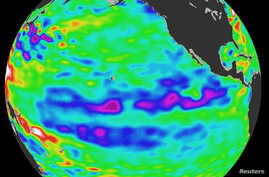 FILE - Oceanographic satellite released by NASA April 21, 2008 depicts one of the strongest La Ninas in many years as it is slowly weakening but continues to blanket the Pacific Ocean near the equator.