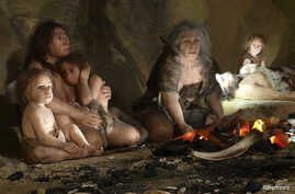 FILE - An exhibit shows the life of a Neanderthal family in a cave, in the new Neanderthal Museum in the northern town of Krapina, Croatia.