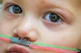 This 2-year-old child wears a pediatric nasal cannula, which is linked to a device that delivers odors. (Credit: Ofer Perl)