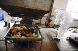 Employees dispose uninfected dead birds at a treatment plant as part of preventive measures against the H7N9 bird flu in Guangzhou, Guangdong province, April 16, 2013.