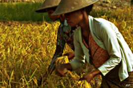 Food Prices Continue to Rise in Asia