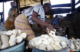 Women work in a cassava grinding mill in Nigeria, Nov. 19, 2009. Nigeria, an example of success for other African countries, produces about 20 percent of the world's cassava.