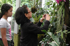Public Gets Rare View of Endangered Plants