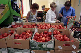 FILE - Women choose Dutch tomatoes at a supermarket in downtown Moscow. The Russian government has banned all imports of meat, fish, milk and milk products and fruit and vegetables from the United States, the European Union, Australia, Canada and Nor
