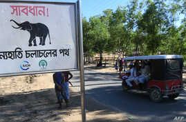 """FILE - A sign that reads """"Warning - Route for Wild Elephants"""" is pictured near Balukhali camp for Rohingya refugees, in Cox's Bazaar, Bangladesh, Oct. 14, 2017."""