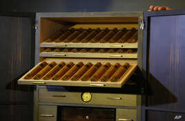 FILE - Cigars lay inside of a humidor made with panels of 24-karat gold-plated tobacco leaves  in Havana, Cuba, Feb. 29, 2016.