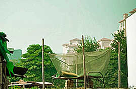 Malaria Drugs Add to Bed Net Protection