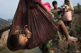 A Rohingya child is carried on a sling while his family walk through rice fields after crossing the border into Bangladesh near Cox's Bazar's Teknaf area, Sept. 5, 2017.