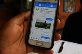 A demonstration of how Zambia-based application AgriPredict can help identify pests and diseases through Facebook, in Kigali, Aug. 21, 2018.