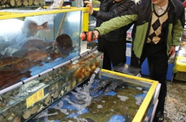 Seafood Sales Sink in S. Korea Due to Radiation Fears