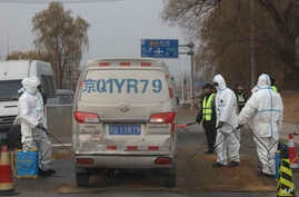 Workers disinfect passing vehicles in an area after the latest incident of African swine flu outbreak on the outskirts of Beijing, China, Friday, Nov. 23, 2018.
