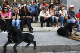 Two dogs sit with hotel workers opposite a closed hotel during a protest against cutbacks and reforms in their sector in central Athens, May 26, 2012.