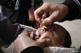 A health worker administers polio vaccination to a child in Raqqa, eastern Syria, Nov.18, 2013.