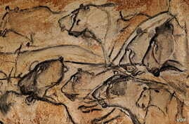 Located in a limestone plateau of the Ardeche River in southern France, the property contains the earliest known and best preserved figurative drawings in the world, dating back 30,000 years. (UNESCO)