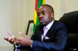 In this March 8, 2018 photo, the leader of MDC-T, Zimbabwe's biggest opposition party, Nelson Chamisa gestures during an interview with the Associated Press in Harare.