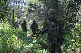 FILE - Soldiers of the Uganda People's Defence Force (UPDF) patrol in the jungle in the Central African Republic as they look for Lord's Resistance Army (LRA) fighters.