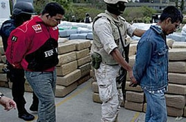 More Than 100 Tons of Marijuana Seized in Mexico