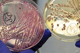 Death Toll Rises From Deadly European Bacteria
