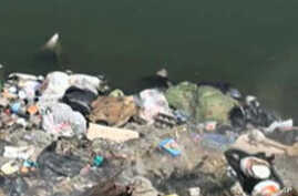Polluted Nile River in Egypt