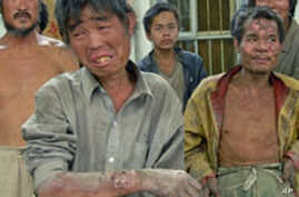 Web Site Shows Extent of Forced Labor Used to Make Everyday Products