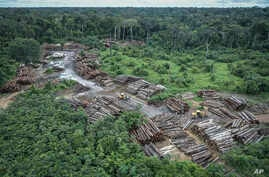 FILE - This May 8, 2018 photo released by the Brazilian Environmental and Renewable Natural Resources Institute (Ibama) shows an illegally deforested area on Pirititi indigenous lands as Ibama agents inspect Roraima state in Brazil's Amazon basin.