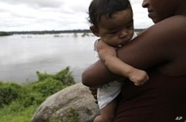 Brazil Clears Amazon Dam for Construction