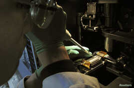 FILE - A researcher injects DNA material onto a laboratory dish.