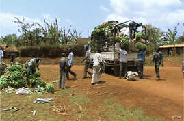 The Africa Development Bank Community Agriculture Infrastructure Improvement Project reduced transport costs and helped farmers earn higher incomes form agricultural commodities. (Photo: AfDB)
