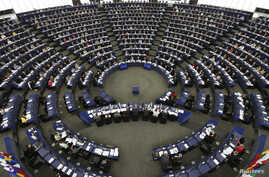 Members of the European Parliament take part in a voting session at the European Parliament in Strasbourg, September 10, 2013.
