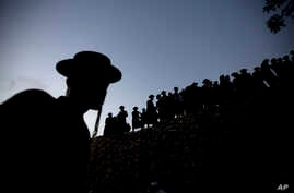 Ultra-Orthodox Jewish men gather to collect water from a spring to make matza, a traditional handmade Passover unleavened bread, near Jerusalem Thursday, April 21, 2016.