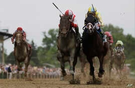 Cloud Computing, second from left, ridden by Javier Castellano, wins the 142nd Preakness Stakes horse race ahead of Classic Empire, ridden by Julien Leparoux, at Pimlico Race Course in Baltimore, May 20, 2017.