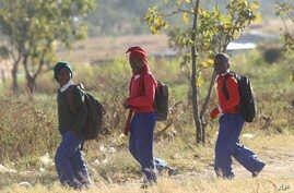 Schoolchildren return home from school after teachers boycotted their lessons, in the capital following a job boycott started via social media platforms, in Harare, July,6, 2016.