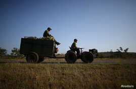 FILE - Farmer Wilber Sanchez (R), 30, drives a tractor near San Antonio de los Banos carrying corn to be sold to small shops on the highway in Artemjsa province, Cuba, April 13, 2016.