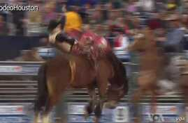 Houston Rodeo Seeks to Minimize Injuries in Dangerous Sport