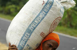 UN Urges International Cooperation on Asia's Rising Food Prices