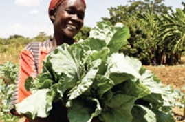 Women Farmers Can Play Big Role in Reducing World Hunger, says New Report