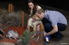 Catherine, the Duchess of Cambridge, and her husband, Britain's Prince William, watch as their son Prince George looks at an Australian animal called a bilby during a visit to Sydney's Taronga Zoo, April 20, 2014.
