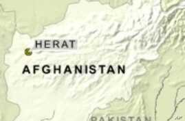 Afghan Energy Minister Survives Deadly Explosion